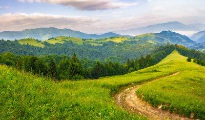Sticker Route, par, conifère, forêt, montagnes, lever soleil