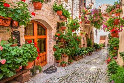 Sticker Rue, petit, ville, Italie, été, Ombrie