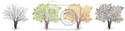 Sticker Saisons du vecteur d'arbre