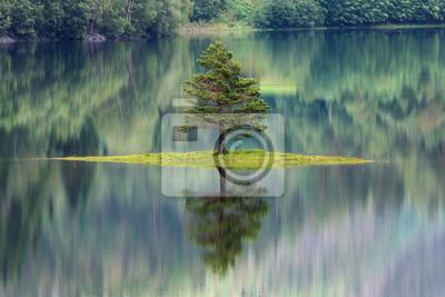 Sticker Sapin se reflétant dans un lac en Norvège