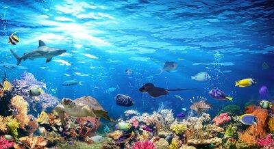 Sticker Scène sous-marine avec récifs coralliens et poissons exotiques