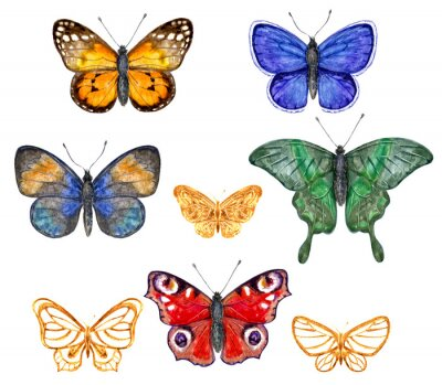 Sticker Set de papillons colorés