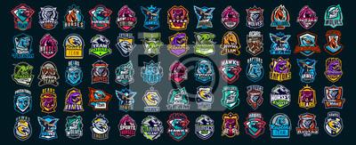 Sticker Set of animal emblems. Bear, dinosaur, eagle, leopard, wolf, horse, fox, lion, grizzly, raptor, hawk, jaguar, cat, lynx, leo, stallion, birds. Sports mascots, colorful collection, vector illustration