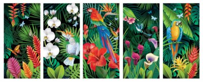 Sticker Set of Backgrounds with tropical jungle plants and birds