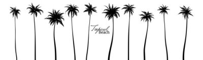Sticker Set of black silhouettes of palm trees. Vector illustration