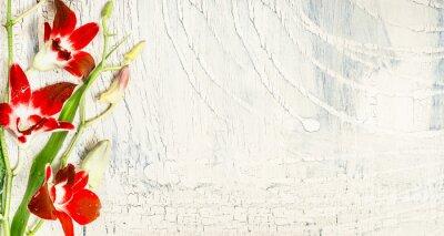 Sticker Shabby fond chic avec des fleurs d'orchidée rouge, vue de dessus, place pour le texte.