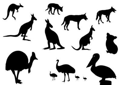 Sticker Silhouette animaux australiens
