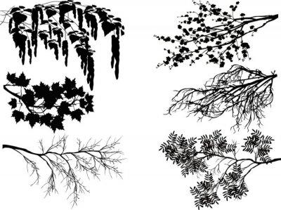 Sticker Six branches d'arbre de printemps sur blanc