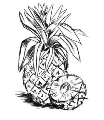 Sticker sketch pour ananas