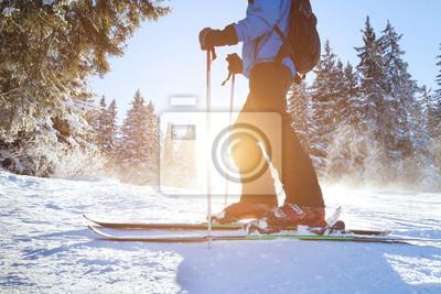 Sticker ski
