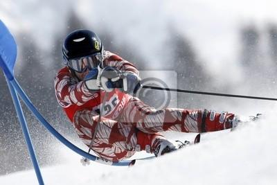 Sticker Ski alpin