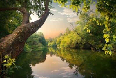 Soirée sur la rivière