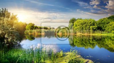 soleil du soir sur la rivière