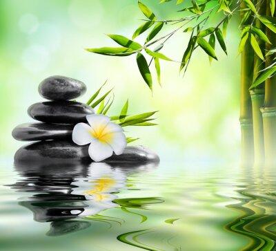 Sticker spa massage dans le jardin de frangipaniers et de bambou