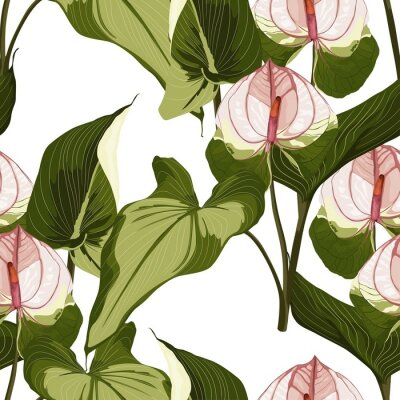 Sticker Summer colorful hawaiian seamless pattern with tropical plants and Spathiphyllum flowers on white background.