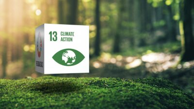 Sticker Sustainable Development 13 Climate Action in Moss Forrest Background 17 Global Goals Concept Cube Design