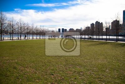 Terrain d'herbe à l'île de Roosevelt et bâtiments à Manhattan avec ciel nuageux