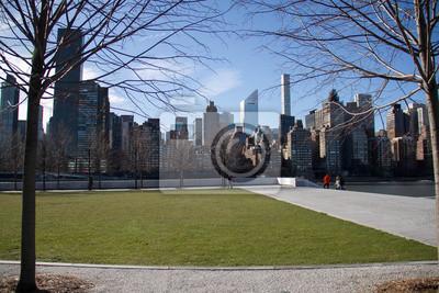 Terrain d'herbe sur l'île Roosevelt et bâtiments à Manhattan