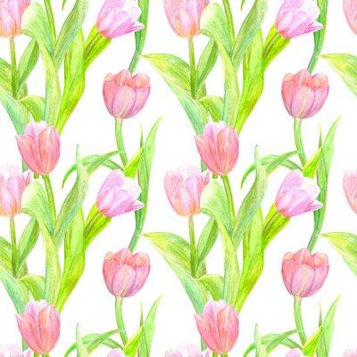 Sticker Texture transparente avec des tulipes élégantes pour votre design. la peinture à l'aquarelle
