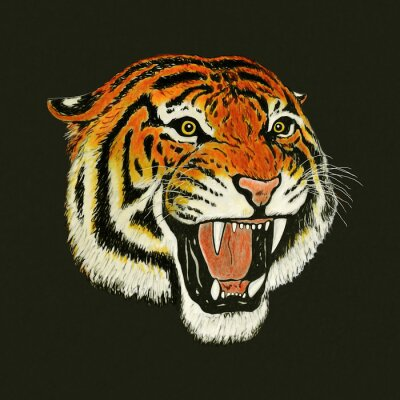Sticker tigre dessin rugissement
