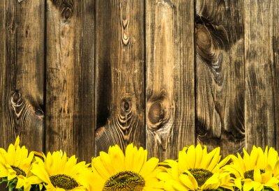Sticker Tournesols sur de vieux planches de bois. Fleurs, fond, copie, espace