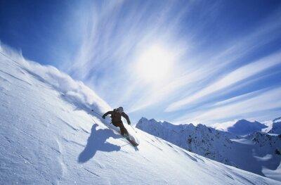 Sticker Toute la longueur du ski de ski sur la neige fraîche de poudreuse