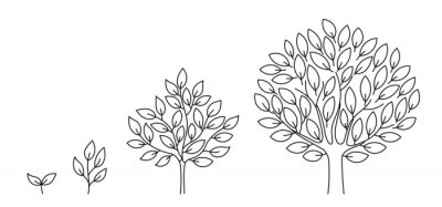 Sticker Tree growth stages. Seedling development stage. Animation progression. Business cycle development infographic. Vector contour line. Open paths. Editable stroke. Plant life process.