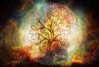 Sticker tree of life symbol and flower of life and space background, yggdrasil.