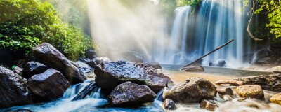 Sticker Tropical, chute eau, jungle, soleil, rayons