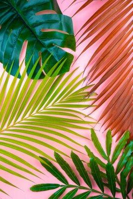 Sticker tropical palm leaf pink sweet background