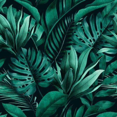 Sticker Tropical seamless pattern with exotic monstera, banana and palm leaves on dark background.