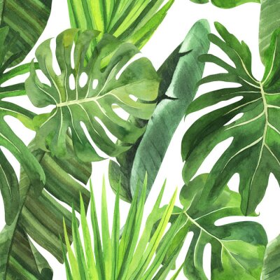 Sticker  Tropical seamless pattern with tropical leaves, palm banana monstera on an isolated white background, watercolor jungle drawing, stock illustration.