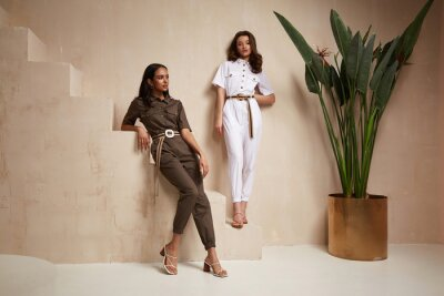 Sticker Two beautiful woman fashion model brunette hair friends wear overalls suit casual style sandals high heels accessory clothes safari Sahara journey summer hot collection plant flowerpot wall stairs.