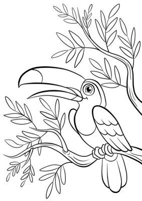Sticker type souriant Toucan mignon dans une forêt