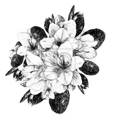 Un Bouquet De Fleurs Azalee Croquis Dessin Vectoriel Monochrome
