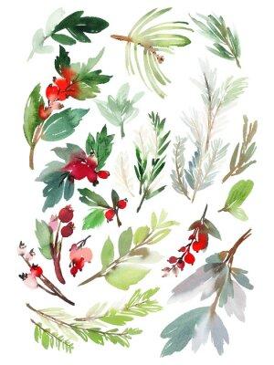 Sticker Un ensemble d'éléments floraux de Noël sur fond blanc