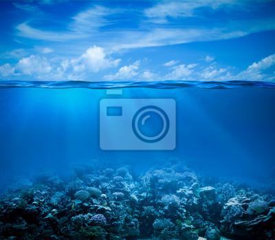 Sticker Underwater coral reef vue du fond marin à l'horizon et les eaux de surface