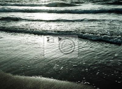 Vagues sur la plage en style monochrome