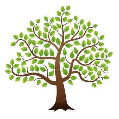 Sticker Vecteur arbre vert sur fond blanc