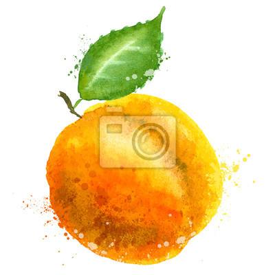 vecteur d'abricot modèle de conception de logo.