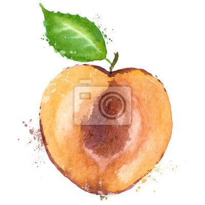 vecteur d'abricot modèle de conception de logo. fruits ou l'icône de la nourriture.