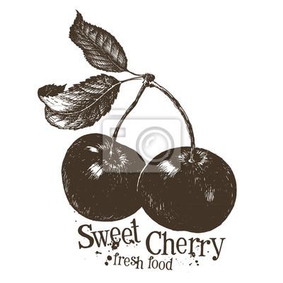 vecteur de cerise modèle de conception de logo. fruits ou l'icône de la nourriture fraîche.