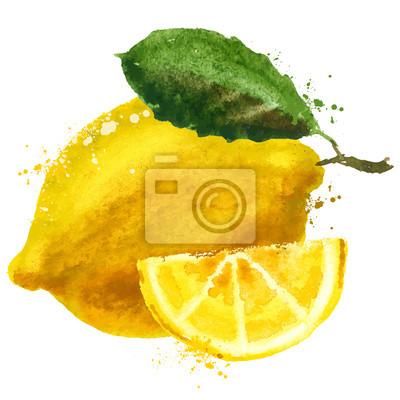 vecteur de fruits de modèle de conception de logo. la nourriture ou l'icône de citron.