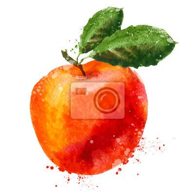 vecteur de fruits de modèle de conception de logo. Peach ou Apple icône.