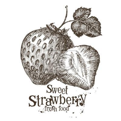 vecteur de la fraise de modèle de conception de logo. baies fraîches, alimentaire ou