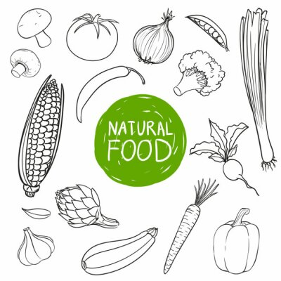 Sticker Vecteur de main, dessiné, légumes