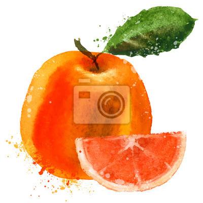vecteur de pamplemousse modèle de conception de logo. fruits ou l'icône de la nourriture.