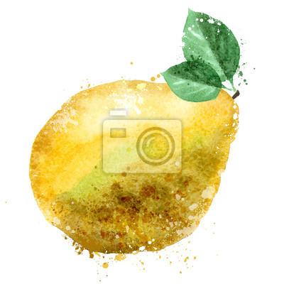 vecteur de pomelo de modèle de conception de logo. fruits ou l'icône de la nourriture.