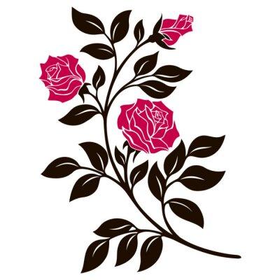 Sticker Vecteur, Illustration, décoration, élément, noir, blanc, rose, branche, rouges, fleurs
