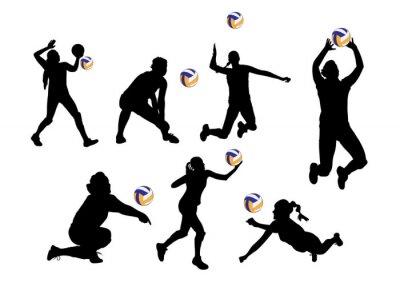 Sticker Vecteur, Illustration, graphique, fond, volley-ball, joueurs, Sport